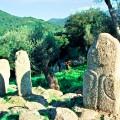 コルシカ島フィリトーザ Fiiitosa (Corsica) 05