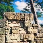 コパン遺跡 Copan ruinas 12