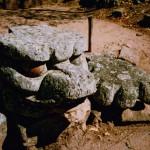 コパン遺跡 Copan ruinas 24