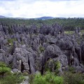 石林 shiering 5