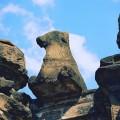 カーンチープラム kanchipuram temple 2