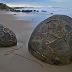 moeraki boulders09
