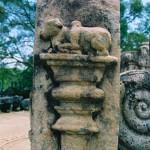 ポロンナルワ polonnaruwa 07