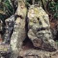 ロテヌフ岩面彫刻 Rotheneuf  04