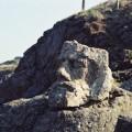 ロテヌフ岩面彫刻 Rotheneuf  07