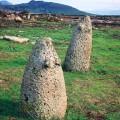 乳岩(サルディニア)Macomer (Sardegna)
