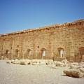 パルミラ遺跡 Palmira 3